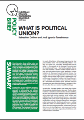 Political Union Cover website